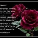 şiir resimli