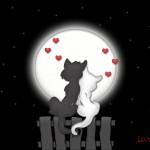 Aşk ve sevgi